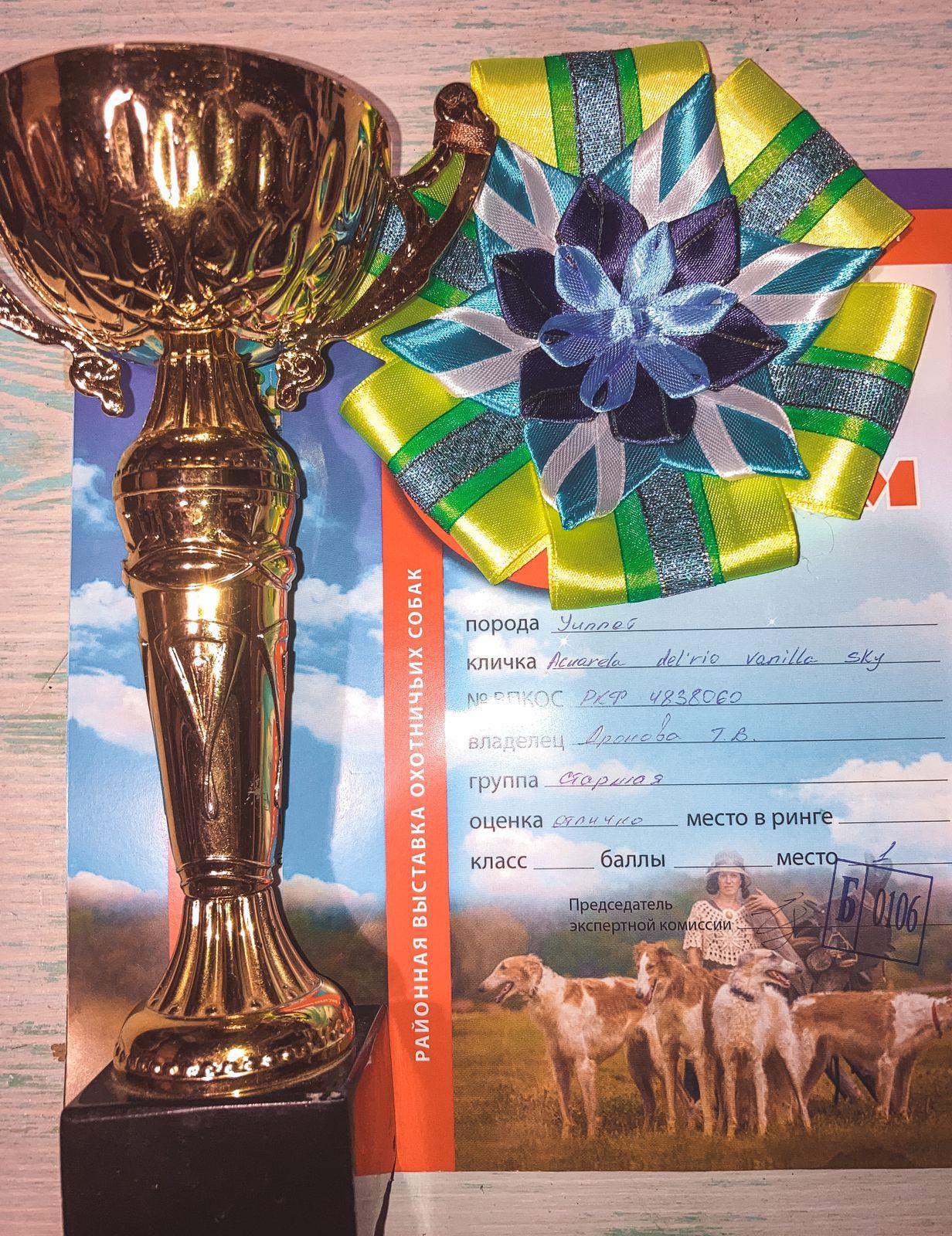 11.09.2021г. 5-я Углическая выставка охотничьих собак.